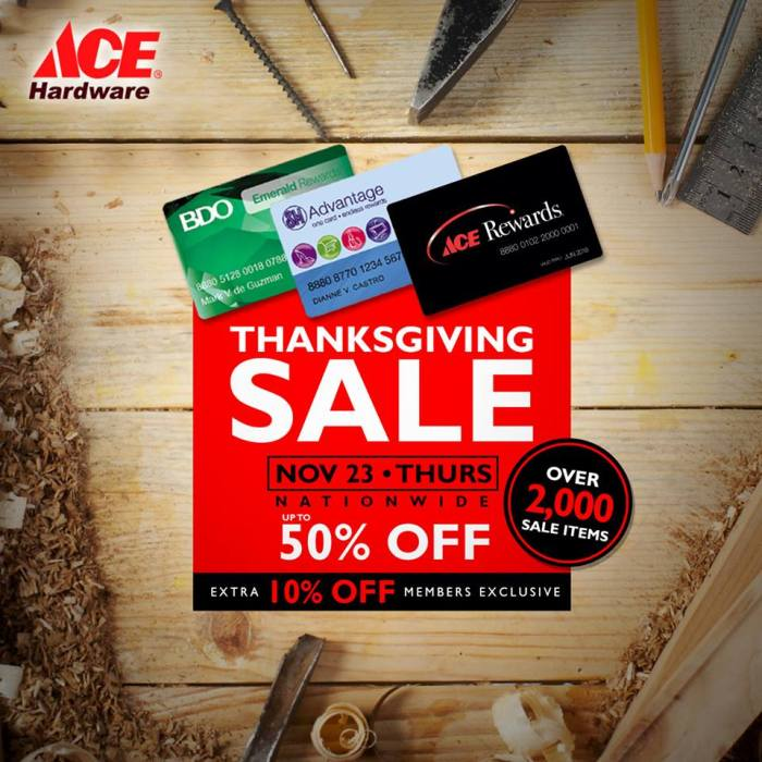Ace Hardware thanksgiving sale