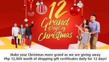 12 grand days of Christmas FI