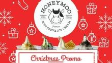 honeymoo Christmas Promo FI
