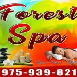 forestSpa Logo