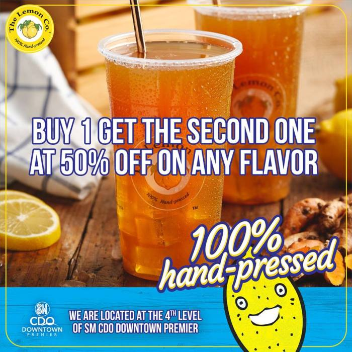 The Lemon Co. 50% off on second order