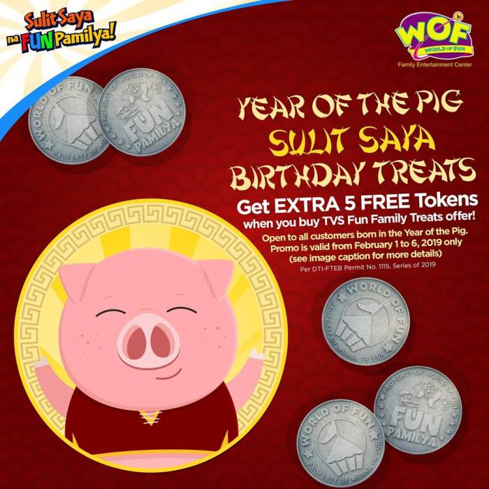 World of Fun Year of the Pig Sulit Saya Birthday Treats