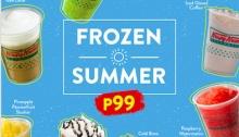 krispy Kreme Frozen Summer FI