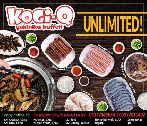 kogi-q no price